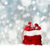 Doručení zásilky do Vánoc